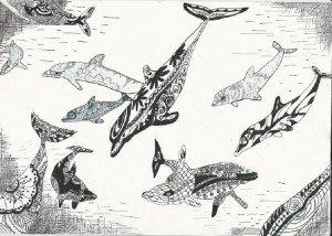 дельфины Аня Петухова 9 л